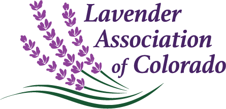 Lavender Association of Colorado